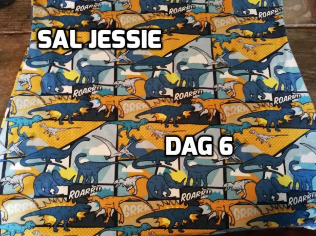 SAL JESSIE 5oo4