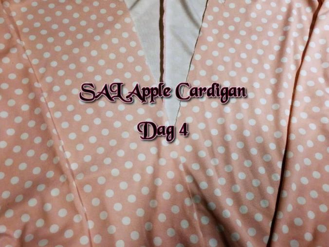 Sal Apple Cardigan Dag 4